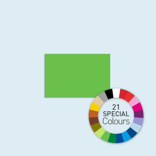 Cloison pleine Compact 250 x 205 cm, disponible en 21 couleurs