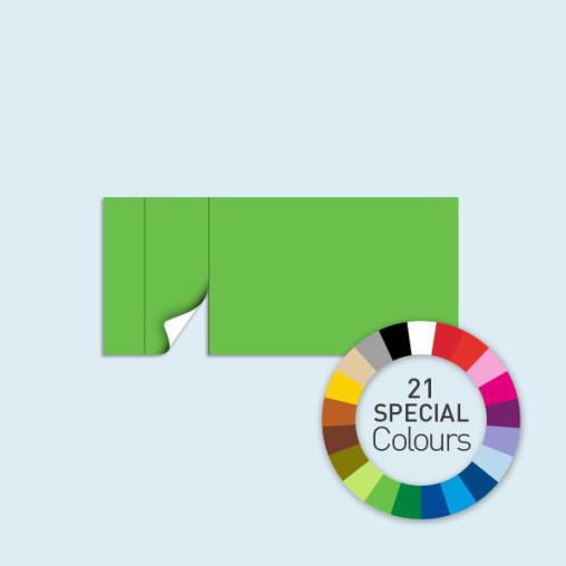 Cloison avec 1 porte à gauche 450 x 205 cm Basic/ Select, existe en 21 tons directs