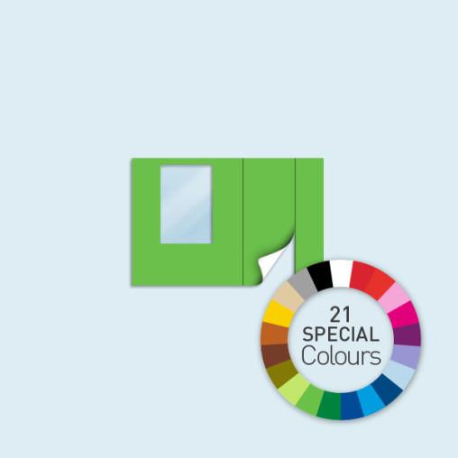 Paroi avec porte + fenêtre 300 x 205 cm - existe en 21 coloris spéciaux