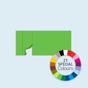 Paroi avec 1 porte à gauche 450 x 205 cm Basic/Select - disponible en 21 tons directs