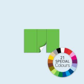 Cloison, porte centrale, 300 x 205 cm, Basic/Select - 21 couleurs spéciales