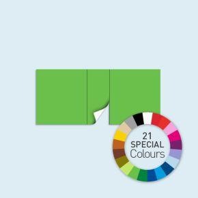Cloison avec 1 porte centrale 450 x 205 cm Basic/ Select, existe en 21 couleurs spéciales