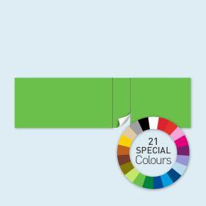 Cloison avec 1 porte côté droit Select 800 x 220 cm - tons directs, côtés avec rubans crochet