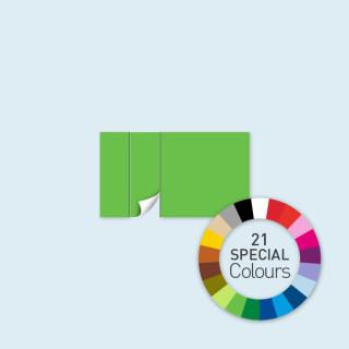 Cloison avec 1 porte à gauche 400 x 220 cm Select, disponible en 21 tons directs