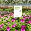 Panneau de jardin avec promotion de la semaine - centre de jardinage